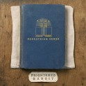Frightened Rabbit - Pedestrian Verse vinyl