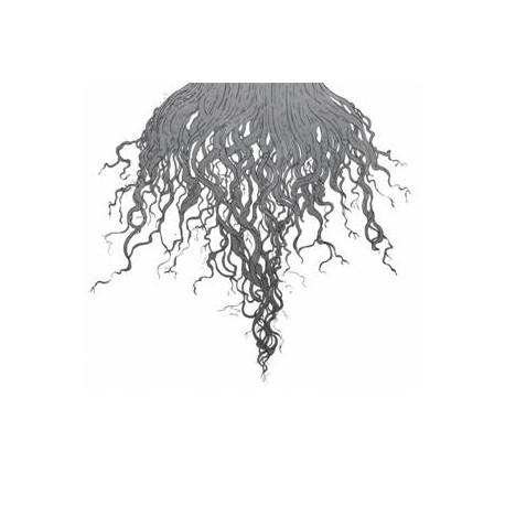 Meursault - Crow Hill CD