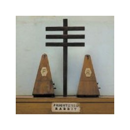 Frightened Rabbit - Woodpile 7""