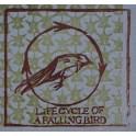 Star Wheel Press - Life Cycle of a Falling Bird CD