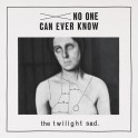The Twilight Sad - No One Can Ever Know vinyl